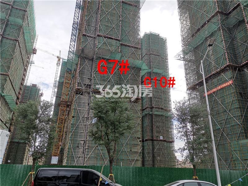 枫林学府在建G7、G10#楼实景图(9.25)
