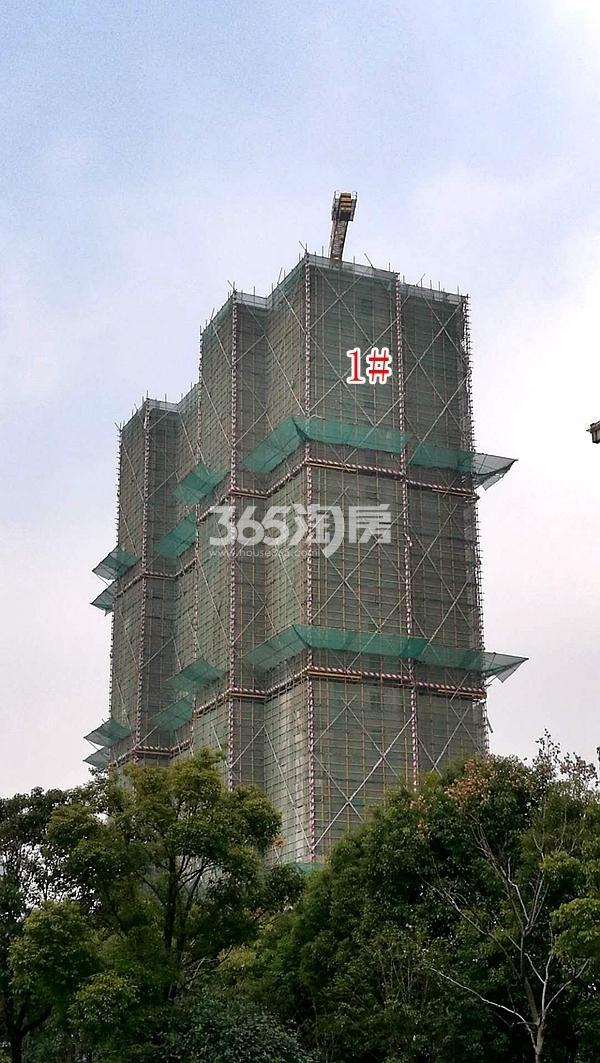 百好锦园1#楼高层实景(2018.2)