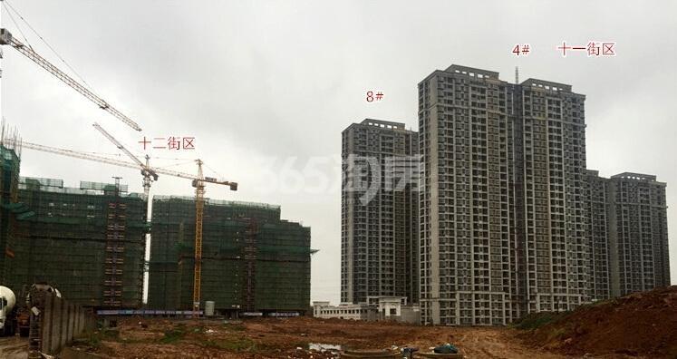 银亿东城11、12街区实景图(12.10)