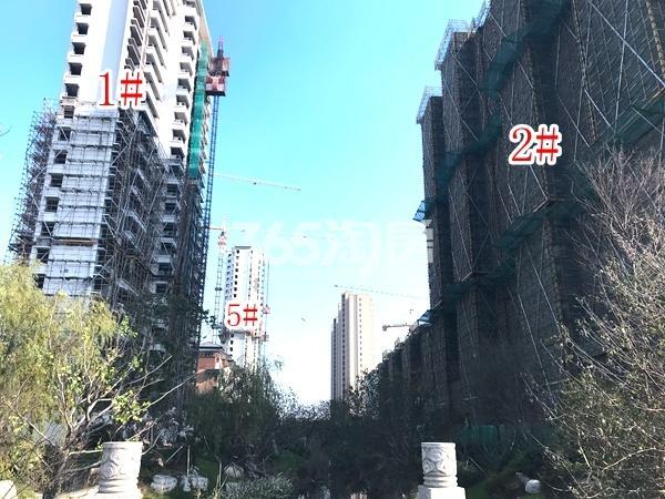 蓝光雍锦里高层1#、2#、5#楼实景图(2017.12 摄)