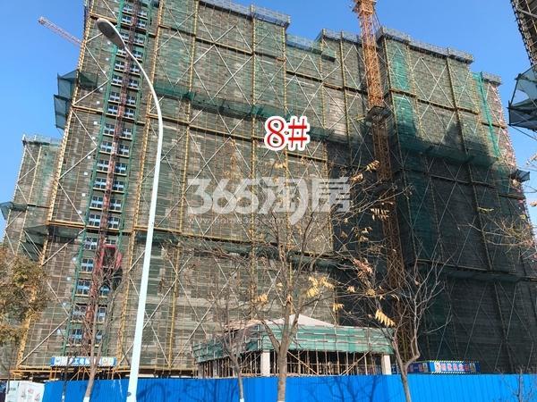 蓝光雍锦里高层8#楼实景图(2017.12 摄)