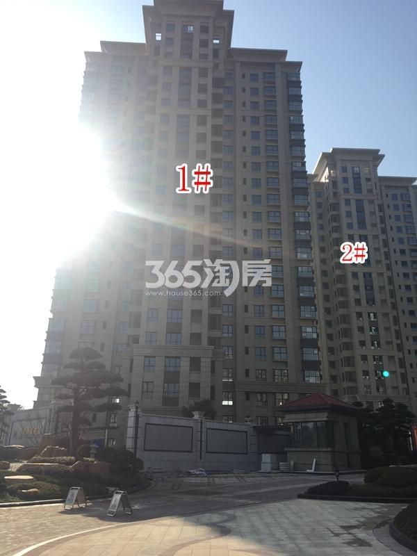百和国际花园高层1#、2#楼实景图(2017.12 摄)