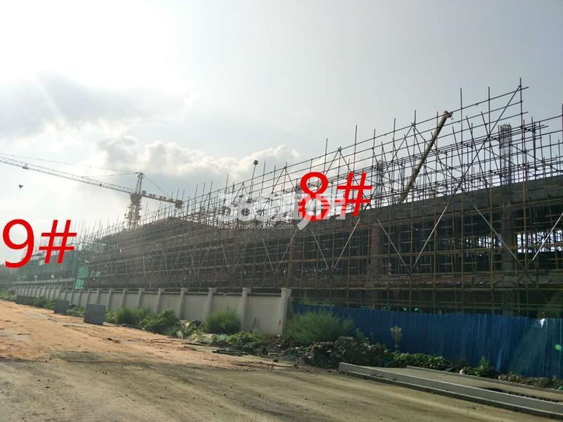绿地理想城悦湖公馆8、9#楼约建至三层(10.15)