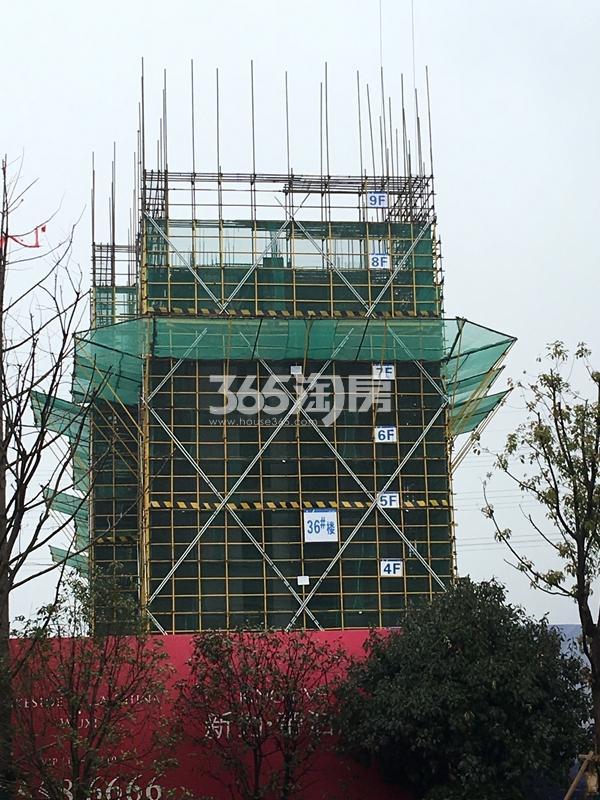 新力帝泊湾36#楼工程进度实景(2018.1摄)