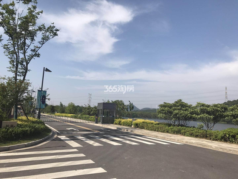瑞安翠湖山小区道路实景(4.15)