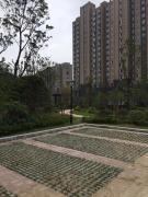 龙池地铁口 双学区龙池商业圈 骋望七里楠新空三房 便宜出售