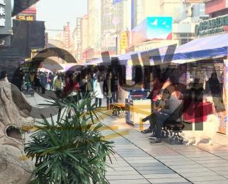 狮子桥临街正门面 一手房东 直接出租 业态不限 门头宽敞