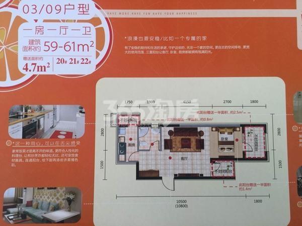 奥园会展广场 一房一厅一卫 59-61平方米
