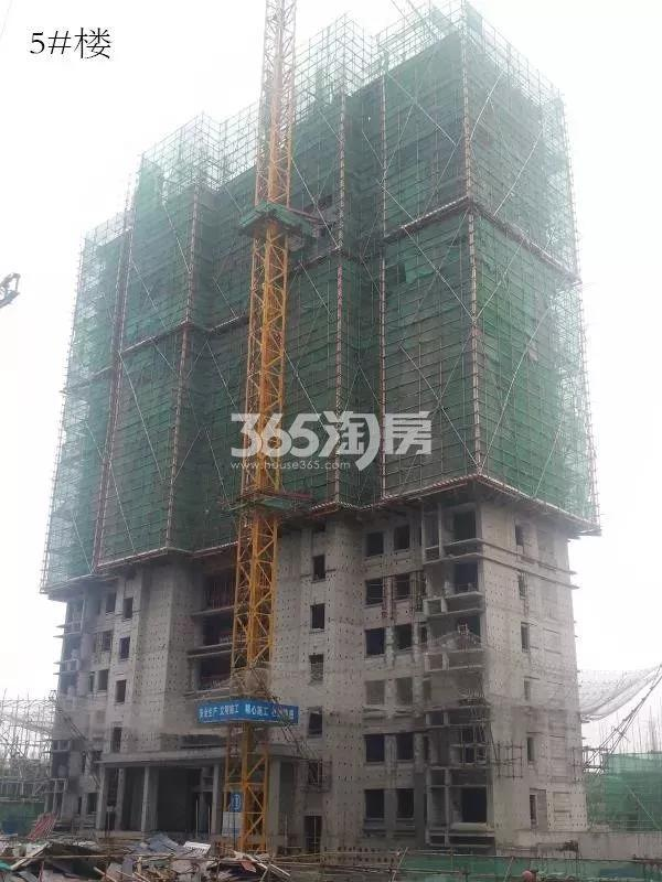 鸿坤理想湾5#楼实景图(2018.7 摄)