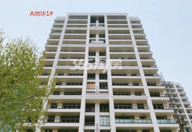 海玥花园A地块1#最新进展图(5.28)