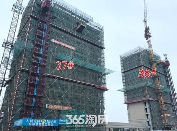 伟星玖璋台36#、37#楼施工中(2017.12摄)
