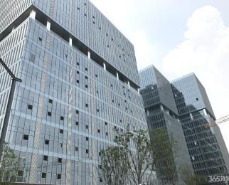 绿地之窗南广场D1栋282平电梯口精装交付 靠地铁口出行方