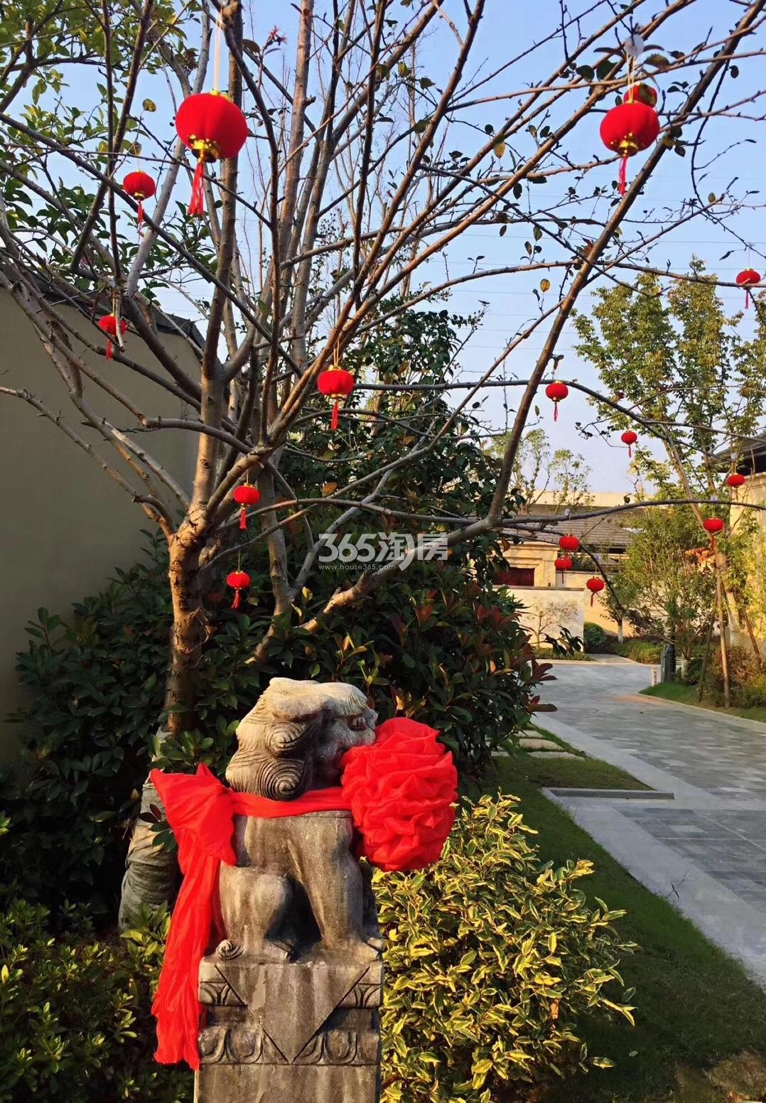 青山湖玫瑰园实景图