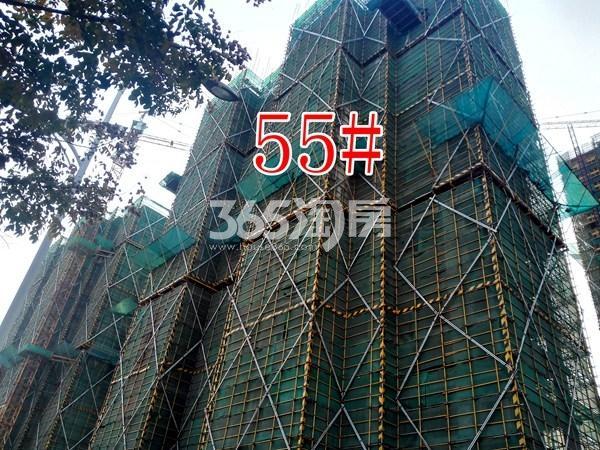 绿地工润和平壹号四期55#工地实景图(11.15)