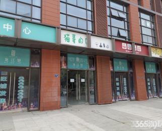 新城市广场 龙江地铁口 江东北路临街商铺 人流量大 纯毛