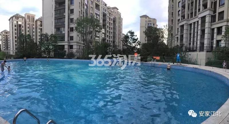 融侨观邸左岸配建泳池实景图(8.27)