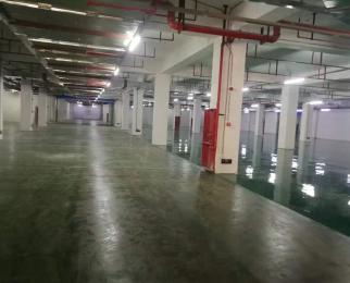 月苑小区经五路 整层厂平米房出租 适合仓储办公等