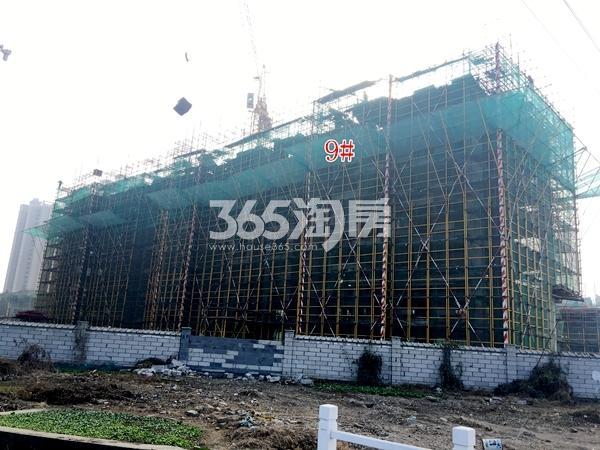 洛城·紫园9#楼小高层工程进度实景(2017.12)