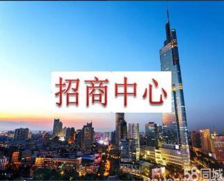 出租 招商部 紫峰大厦电梯口90至2000平湖景房地铁