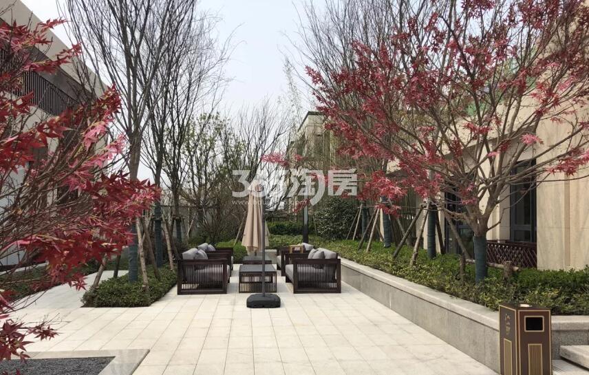 紫云赋江山印售楼部内部休息区实景图(2018.7.9)