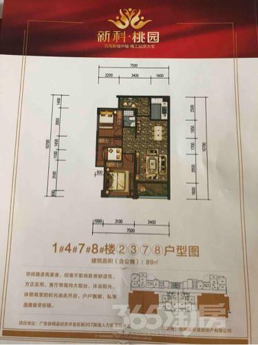 新科桃园2室3厅2卫75平米毛坯产权房2017年建满五年