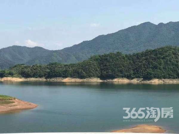 千岛湖一线湖景房70年精装修不限购不限贷可落户