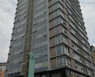 常府风华苑1室1厅1卫55平米2010年产权房精装