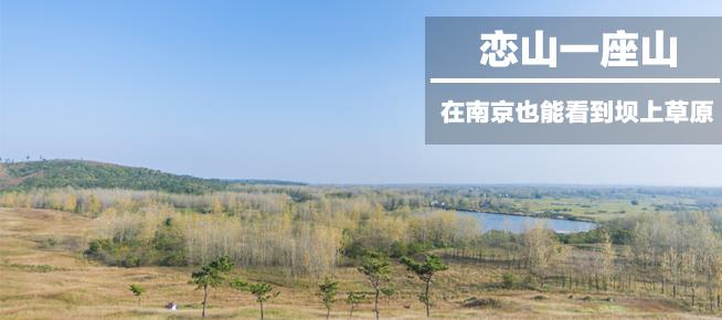光影石城328: 在南京也能看到坝上草原