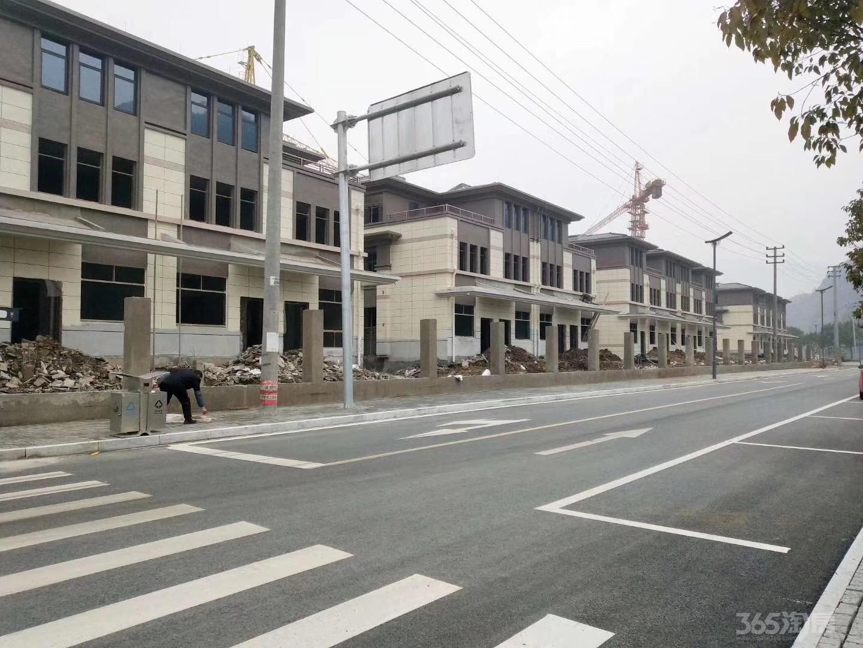 杭州养老度假别墅建德三江口江南秘墅稀缺总价135万