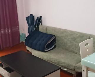 宏河嘉园1室1厅1卫35平米整租精装