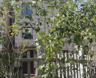 双湖明珠别墅,边户超大花园,实际使用面积300平方米