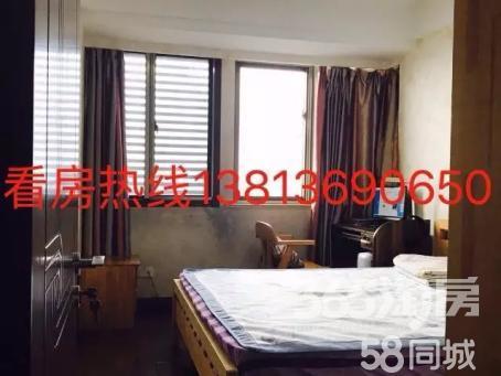 九洲新世界3室2厅2卫124.00㎡豪华装227.8万繁华地