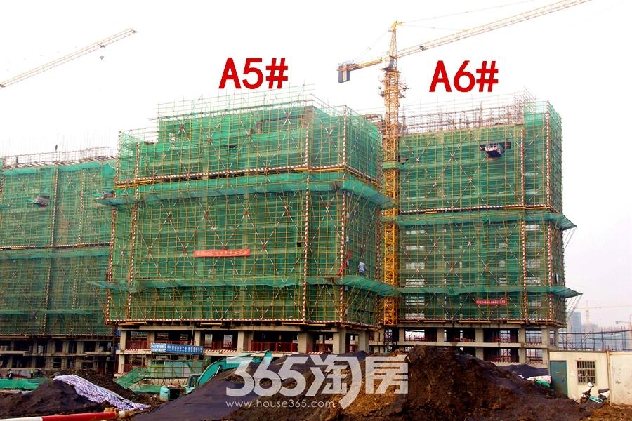 汀海壹品A5#、A6#楼12月工程进度(2018.12摄)