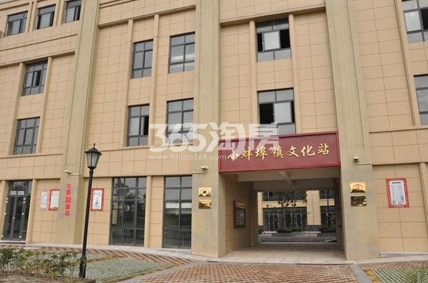 丽景天成(三期紫金苑) 小蚌埠镇文化馆 201710