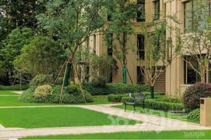 绿城东方兰园3室2厅2卫126平米整租豪华装