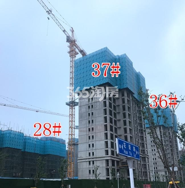 荣盛花语城28、36、37#工地建设实景图(6.28)