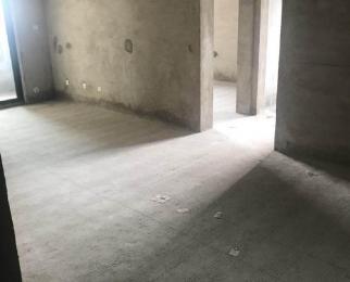 北一环内不限购不限贷金科庐州樾洋房4室毛坯交付 自己可改动