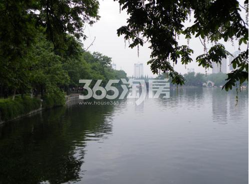 东方樾府周边配套包公园实景图(2018.1.1)