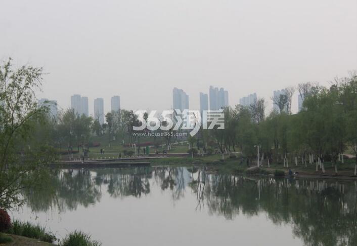 滨湖双玺周边塘西河公园环境实景图(2018.2.28)