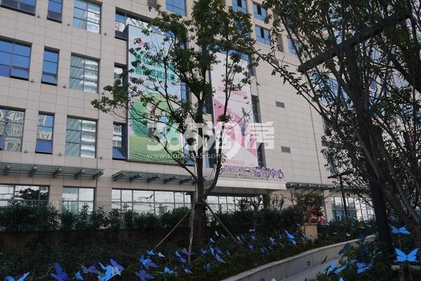 南翔城市广场 残疾人步道 201801