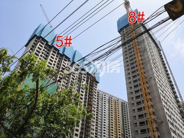 万科翡翠天地一期5、8#楼建约30层(5.28)