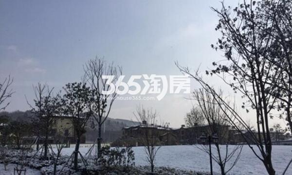 正源尚峰尚水实景图(2016.1.27)