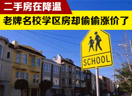 南京学区房市场调查