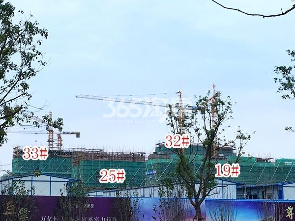 恒大观澜府洋房19#、25#及高层32#、33#楼实景图(2017.11 摄)