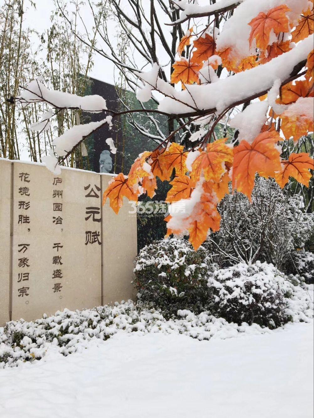 公元天下售楼部一角雪景实景图(2018.1.4)