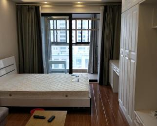伟星幸福里1室0厅0卫45平米整租豪华装