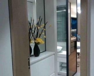 雨花客厅1室1厅1卫37平米整租精装