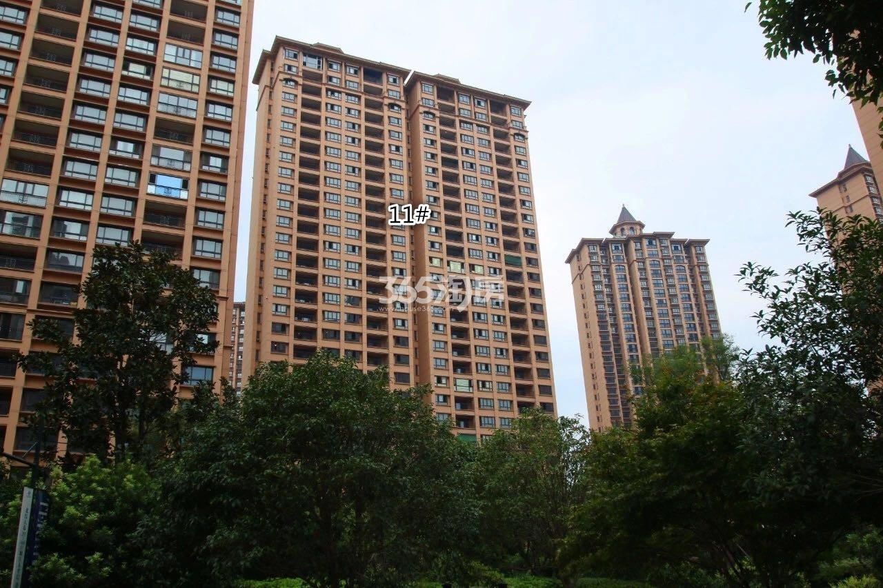 雅居乐滨江国锦绣江山组团11号楼实景图(9.10)