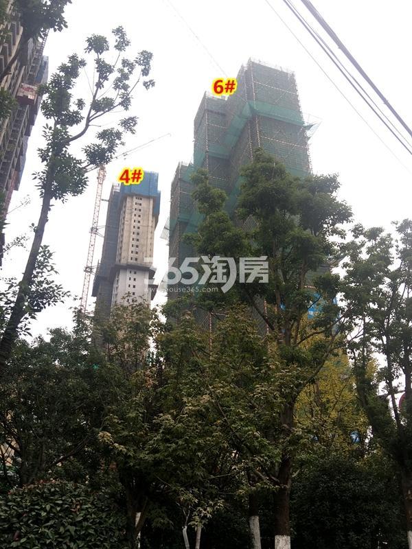 世茂时光里4#、6#楼工程实景(2017.11摄)