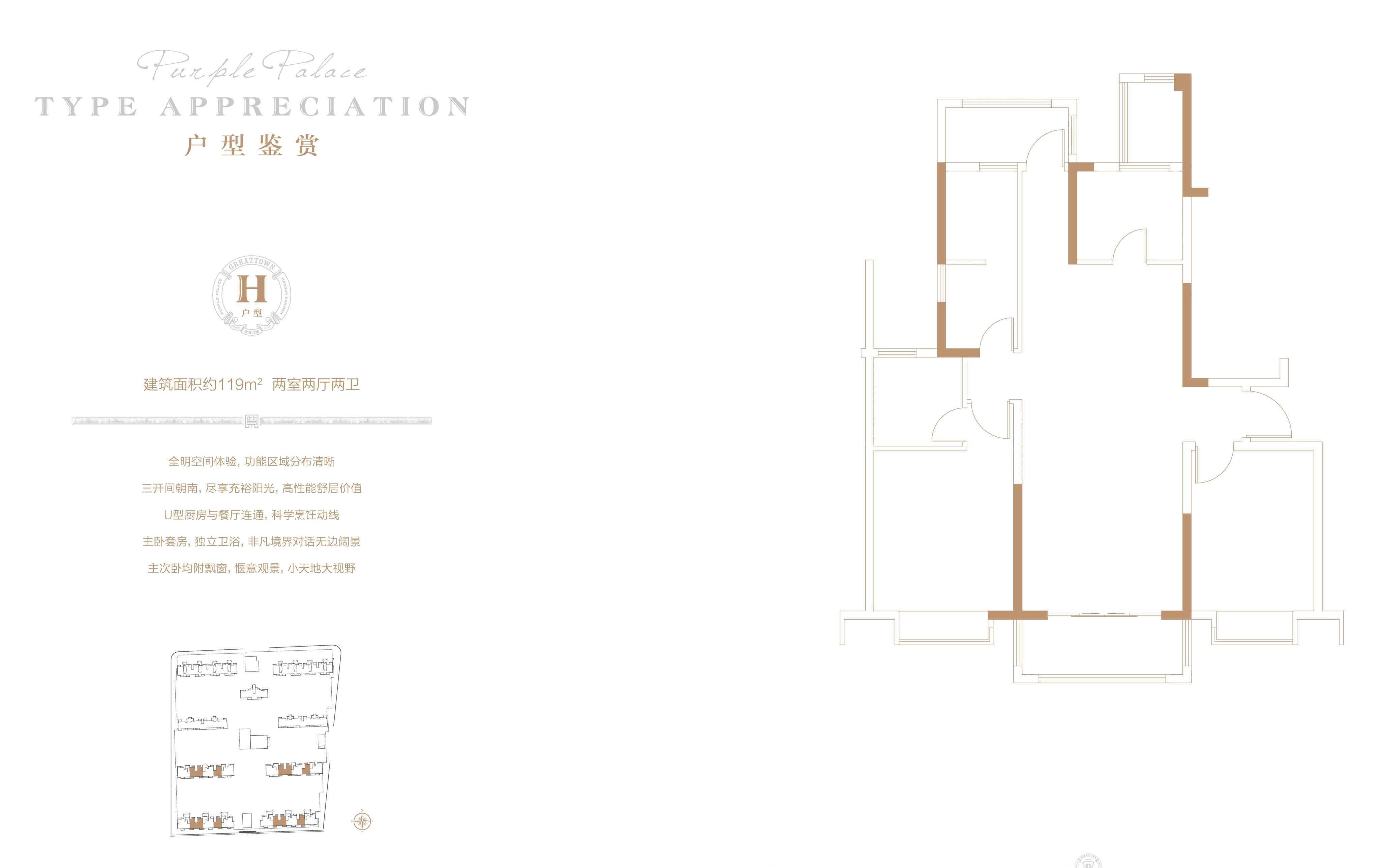 大名城·紫金九号119㎡两室两厅两卫H户型